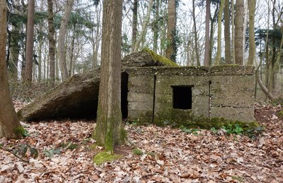 VLADSLO_Praetbos__Praetwald__Lehr_Infanterie_Regiments__-Betonstruktur-_Belgien_Provinz_Westflandern_02.jpg